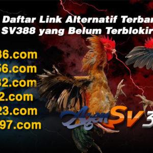Link Alternatif SV388 2019 Terbaru